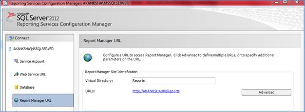 Report Manager URL